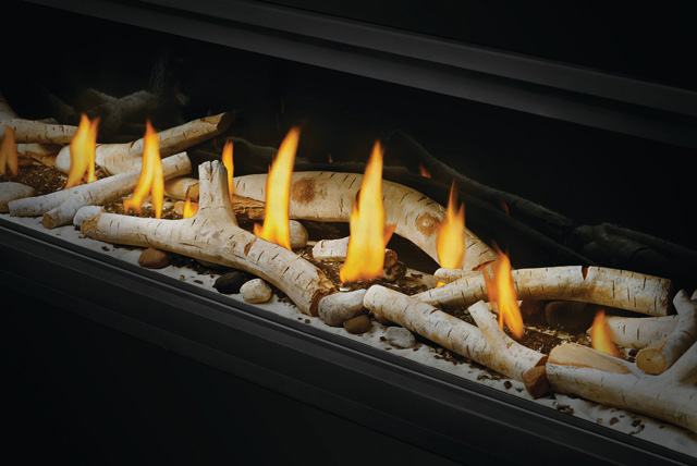 Birch Logs and Shore Fire Kit in Vector Linear